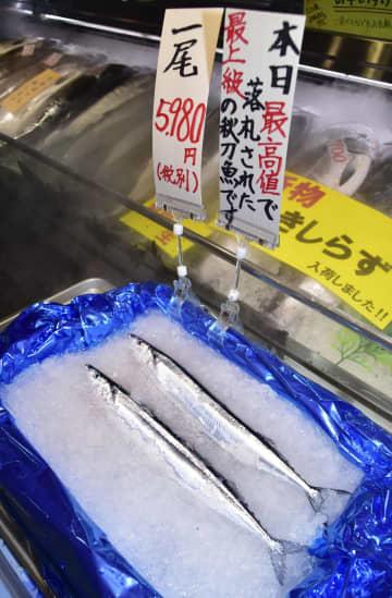 サンマ流し網漁、水揚げゼロ 97年以降初、北海道東部 画像1
