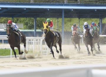 笠松競馬で馬が走る演習 本番再開へ「公正確保」 画像1