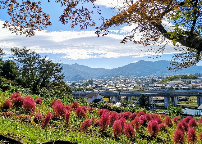 【山梨県】自然のパワーに癒やされたい!富士山の絶景、農場体験、温泉、桜や紅葉、ご当地グルメを満喫 画像3