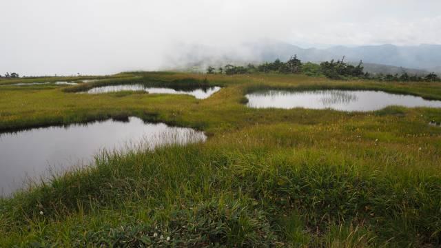 絶景と秘湯に出会う山旅(29)苗場山の高層湿原、そして名湯・法師温泉長寿館 画像14