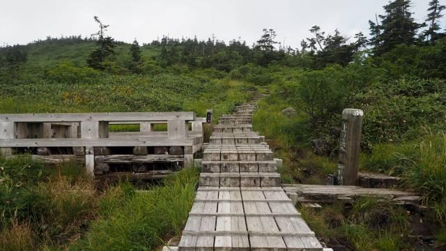 絶景と秘湯に出会う山旅(29)苗場山の高層湿原、そして名湯・法師温泉長寿館 画像6