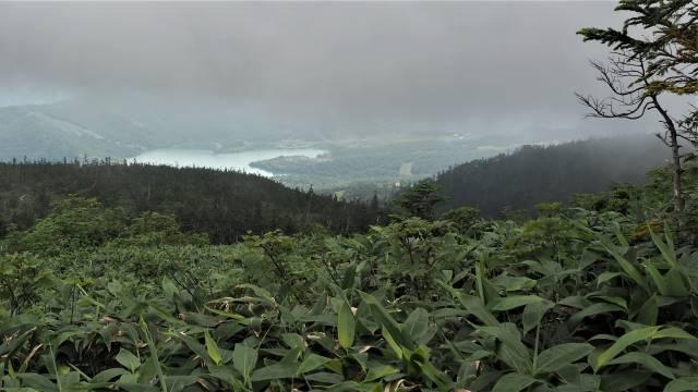 絶景と秘湯に出会う山旅(29)苗場山の高層湿原、そして名湯・法師温泉長寿館 画像7