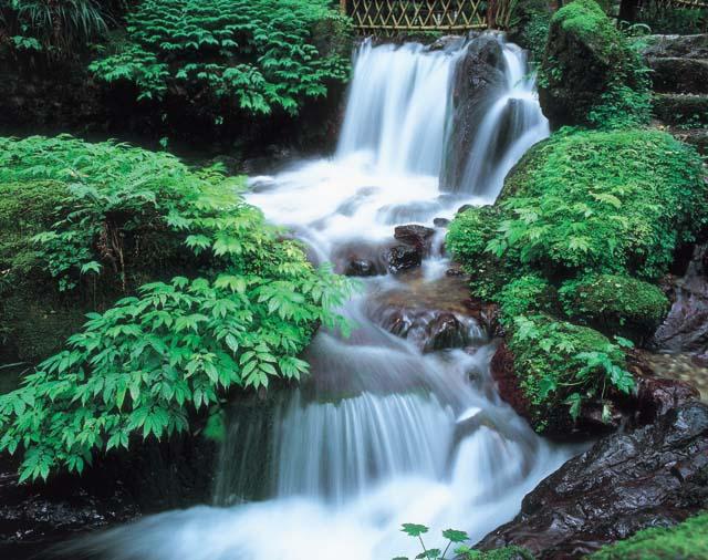 【涼を呼ぶ夏の絶景】北陸地域の美しい滝5選 画像5