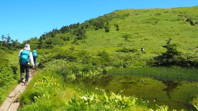 絶景と秘湯に出会う山旅(30)天空の楽園・巻機山、そして秘湯・松之山温泉凌雲閣へ 画像14