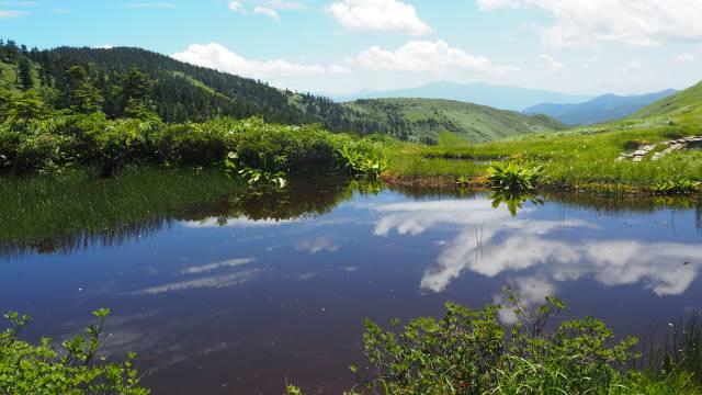 絶景と秘湯に出会う山旅(30)天空の楽園・巻機山、そして秘湯・松之山温泉凌雲閣へ 画像15