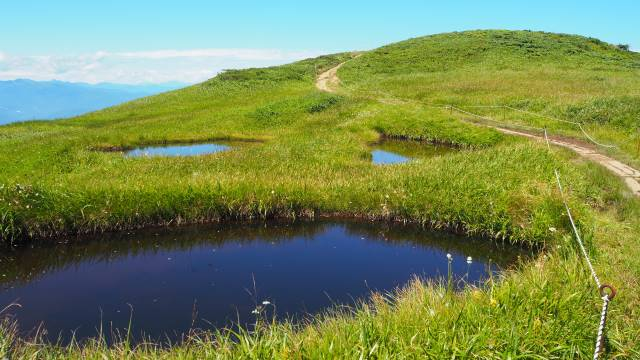 絶景と秘湯に出会う山旅(30)天空の楽園・巻機山、そして秘湯・松之山温泉凌雲閣へ 画像18