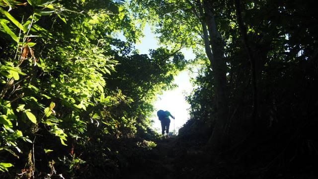 絶景と秘湯に出会う山旅(30)天空の楽園・巻機山、そして秘湯・松之山温泉凌雲閣へ 画像5
