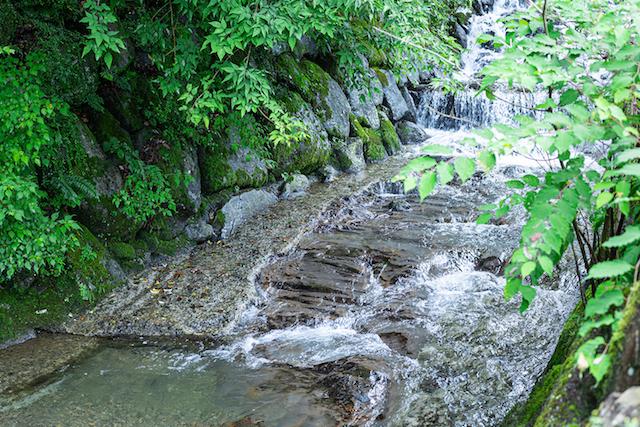 大阪府初のドーム型テントに宿泊!「FOREST GLAMPING-牛滝温泉 四季まつり」 画像3