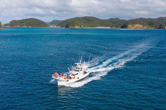 【1組限定グランピング】神々の島・壱岐島でイルカに癒されるリトリートプラン 画像7