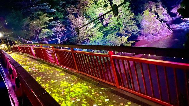 北海道・定山渓の大自然をアートで体感する!ネイキッドのナイトウォーク開催中 画像5