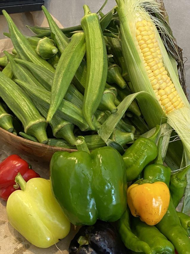 奥日光で地元の食材を堪能!「ZEN RESORT NIKKO」カフェダイニングがオープン 画像8