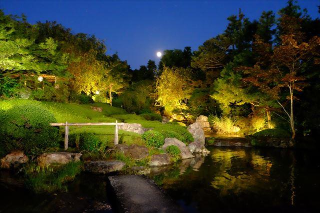 【星のや京都】夜の妙心寺退蔵院を貸切!「月夜の薄紅葉(うすもみじ)狩り」 画像1