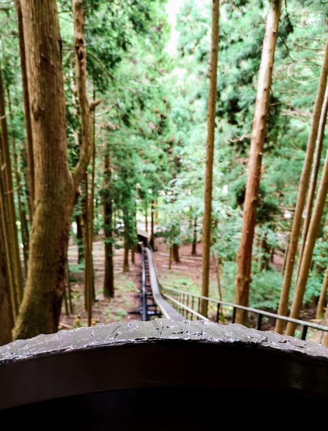 神秘の空間「鍾乳洞」をはしご!洞川の大自然に触れるアクティビティ【奈良・天川村】 画像4