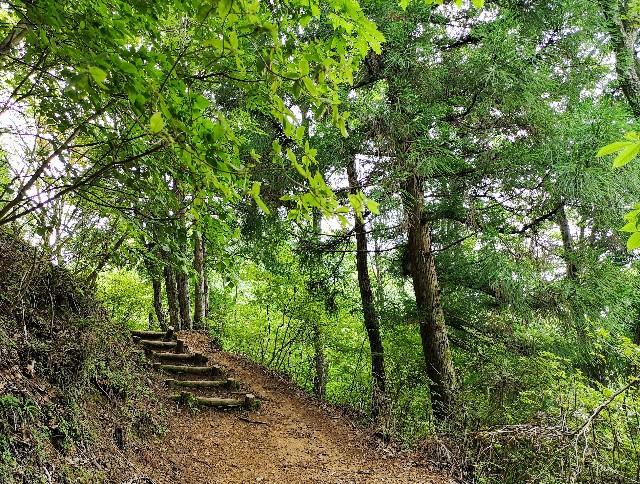 神秘の空間「鍾乳洞」をはしご!洞川の大自然に触れるアクティビティ【奈良・天川村】 画像17