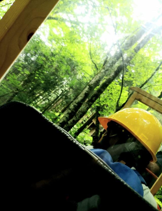 神秘の空間「鍾乳洞」をはしご!洞川の大自然に触れるアクティビティ【奈良・天川村】 画像21