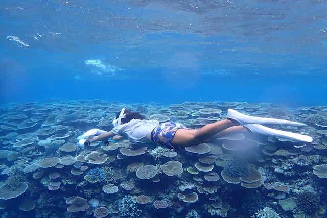 【リゾナーレ小浜島 宿泊ルポ|後編】幻の島、海上ラウンジ、日本最大珊瑚礁でのシュノーケルまで、最高のアクティビティを体験! 画像17