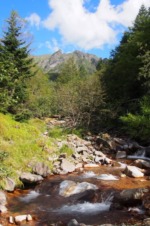 絶景と秘湯に出会う山旅(32)赤岳鉱泉から八ヶ岳主峰の赤岳を目指す 画像7