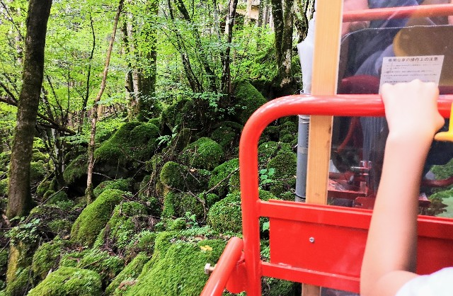 【奈良・天川村】パワースポット、温泉、鍾乳洞・・・車なしでも行ける秘境!心温まる1泊2日の旅 画像27