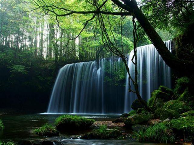 いつか訪れたい「熊本・阿蘇」の魅力。大自然の素晴らしさを実感できる絶景 画像4