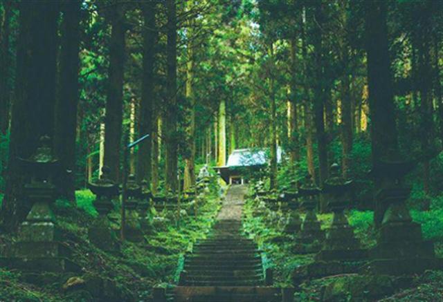 いつか訪れたい「熊本・阿蘇」の魅力。大自然の素晴らしさを実感できる絶景 画像8