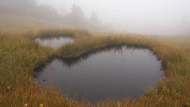 絶景と秘湯に出会う山旅(33)日本百名山の会津駒ケ岳と秘湯 桧枝岐温泉 画像7