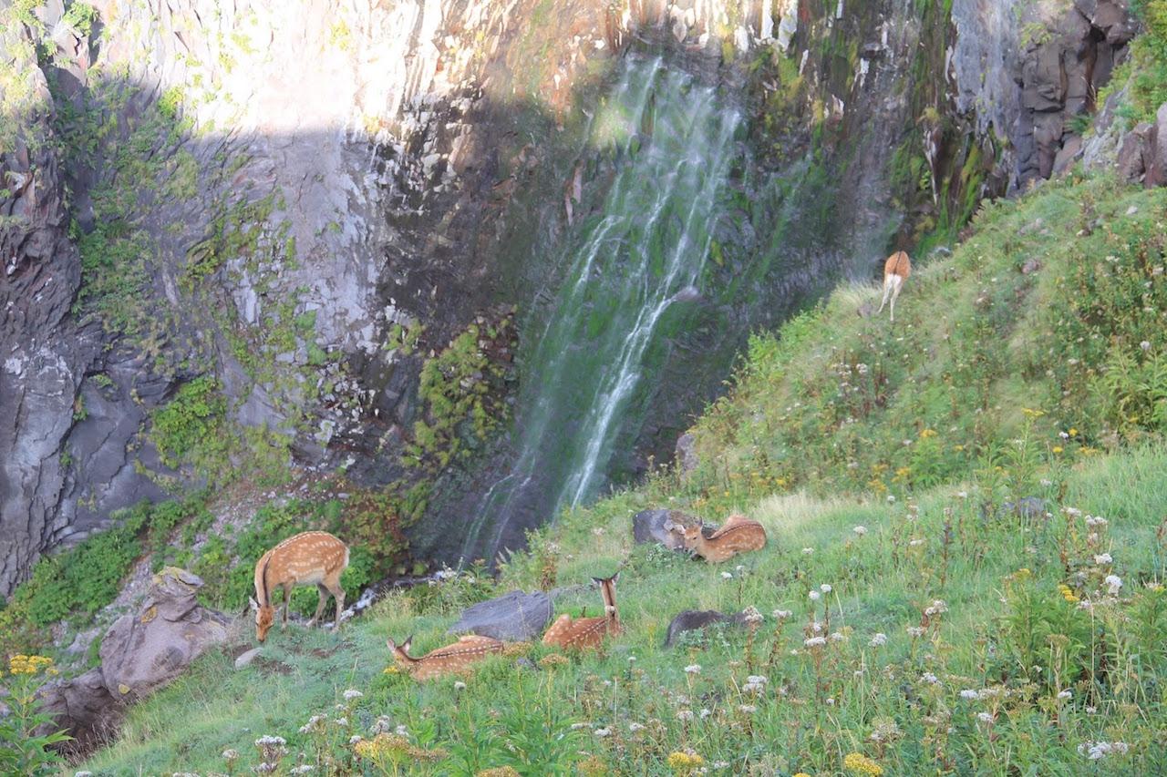 【涼を呼ぶ夏の絶景】北海道の美しい滝5選 画像5
