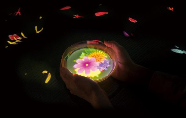【季節限定】チームラボの大自然のアート展に、紅葉の色彩や秋の花々が登場! 画像6