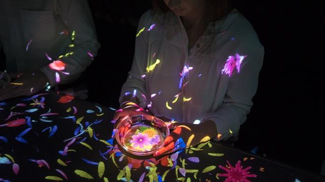 【季節限定】チームラボの大自然のアート展に、紅葉の色彩や秋の花々が登場! 画像1