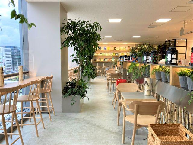 京都駅にマールブランシュ「ロマンの森カフェ」がオープン!オリジナル京都紅茶と限定スイーツを楽しめる【実食ルポ】 画像4