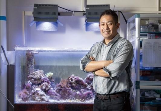 再生医療技術でサンゴ礁を守ろう 関西大学サンゴ群集再生技術研究会がクラファン 画像1