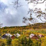 空中散歩で紅葉を楽しむ!紅葉ウィーク2021を開催【HAKUBA VALLEY栂池自然園】 画像1