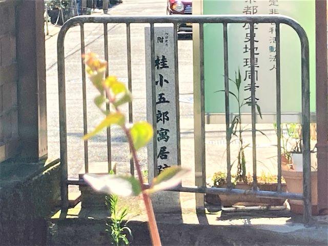 【星野リゾート OMO5京都三条 宿泊ルポ 後編】歴史さんぽ、グルメ、お買い物・・・街歩きで京都を満喫 画像13