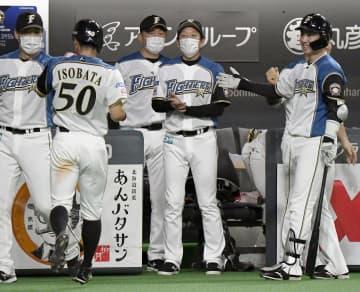 日2―1西(2日) 日本ハムが競り勝つ 画像1