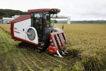 公約にコメ農家支援へ無利子融資 自民が衆院選で、値下がり対策 画像1