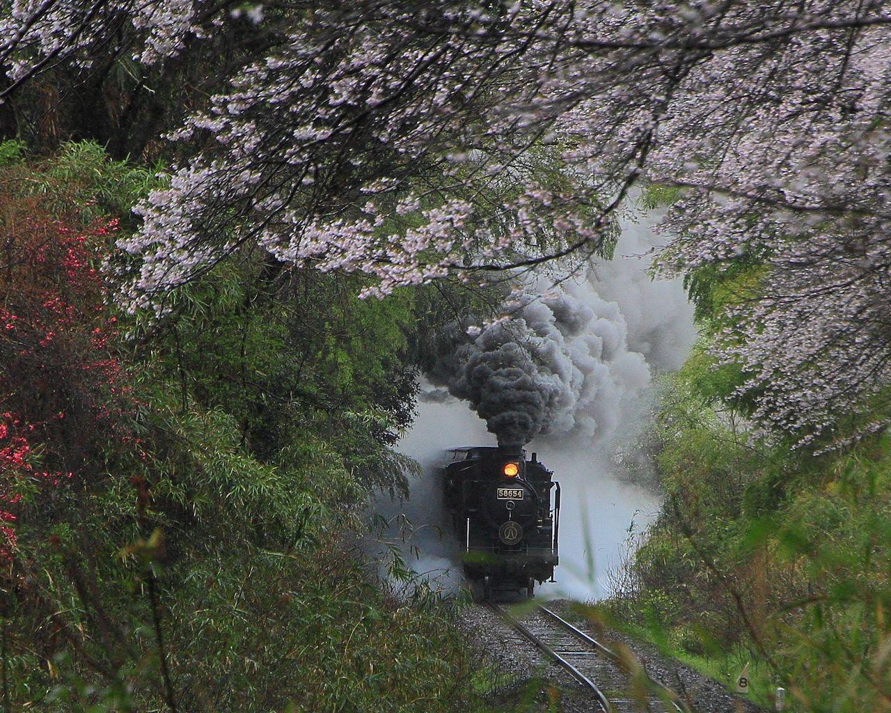 『鬼滅の刃』煉獄さんを思って巡りたい!「無限列車」のフォトスポット6選 画像1