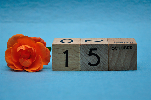 【10月15日】今日は何の日?きのこの日 画像1