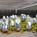 何度も食べたくなる美しきヴィーガンラーメン!豊洲「チームラボプラネッツ」でアートと食欲を満たす秋 画像1