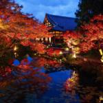 【京都】通常非公開の書院や庭園が公開「くろ谷 金戒光明寺」秋の特別拝観 画像1