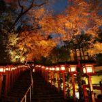 紅葉のライトアップが秋の夜空を彩る「京の奥座敷・貴船もみじ灯篭」 画像1